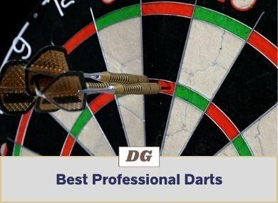 Best Professional Darts